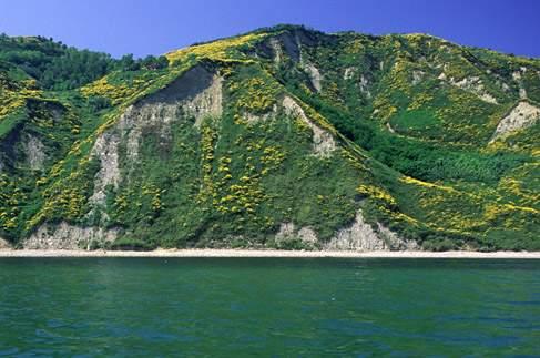 Tra colline e mare: il Parco Regionale del Monte San Bartolo