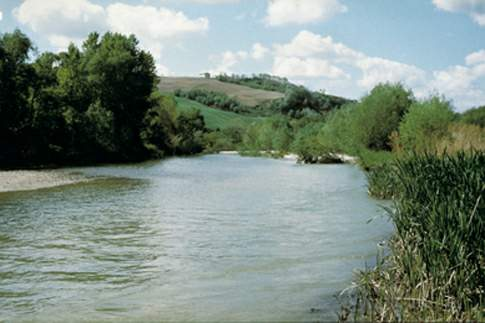 Riserva Naturale Regionale Ripa Bianca