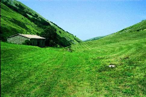 Riserva Naturale Statale Montagna di Torricchio